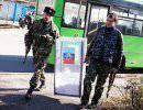 Новороссия: жизнь после выборов