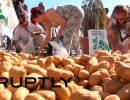 В Испании фермеры протестуют против падения цен на сельхозпродукцию