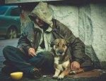Европейцы против нищих и бездомных