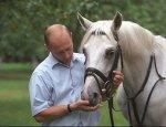 Четвертый всадник Апокалипсиса на бледном коне: Карты сданы, отсчет пошел