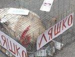 Мосийчук кинул «петуха Ляшко» в толпу на растерзание