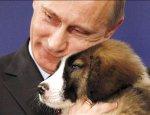 Пять дней провокаций Путина