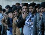 СМИ Швеции признали угрозу толерантности: мигранты сделают нас колонией