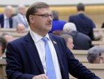 Косачев: Визы с РФ - политический самострел для Украины